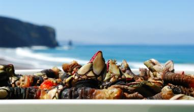 Restaurante da Praia