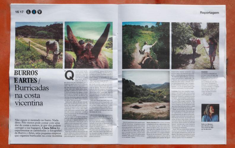 Burros & Artes em destaque no Jornal i