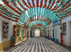 Já conhece o Festival de Mastros de São Teotónio?